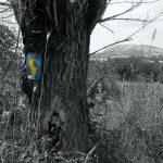 Janapar Trail black & white - część północna - Piąty Kierunek02
